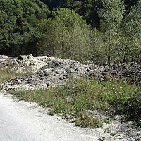 IMG 1450