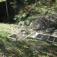 IMG 0666